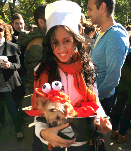 Chef and Lobster Dog Costume